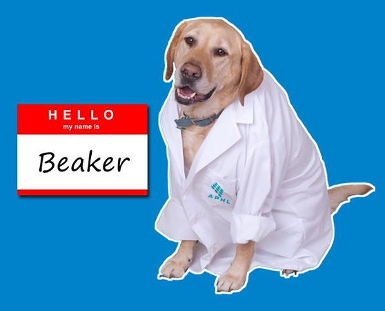 Dogs Ease Work Stress and Great Lab Continuing Education Does Too | www.aphlblog.org