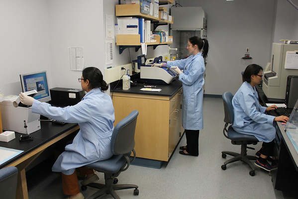 The Molecular Diagnostics group at New Hampshire's Public Health Laboratory.  This group did the hepatitis C (HCV) sequencing during the 2012 outbreak to determine the HCV subtype and HCV genetic relatedness. | www.aphlblog.com
