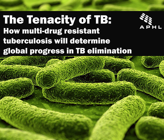 The Tenacity of TB: How multi-drug resistant tuberculosis will determine global progress in TB elimination | www.APHLblog.org