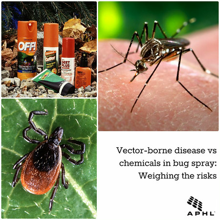 Vector-borne disease vs chemicals in bug spray: Weighing the risks | www.aphl.org